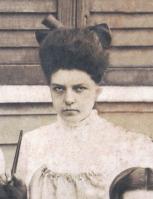 mayer-aralia-c-1905